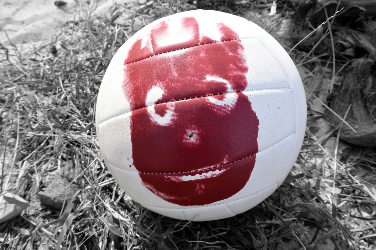 wilson the survivor