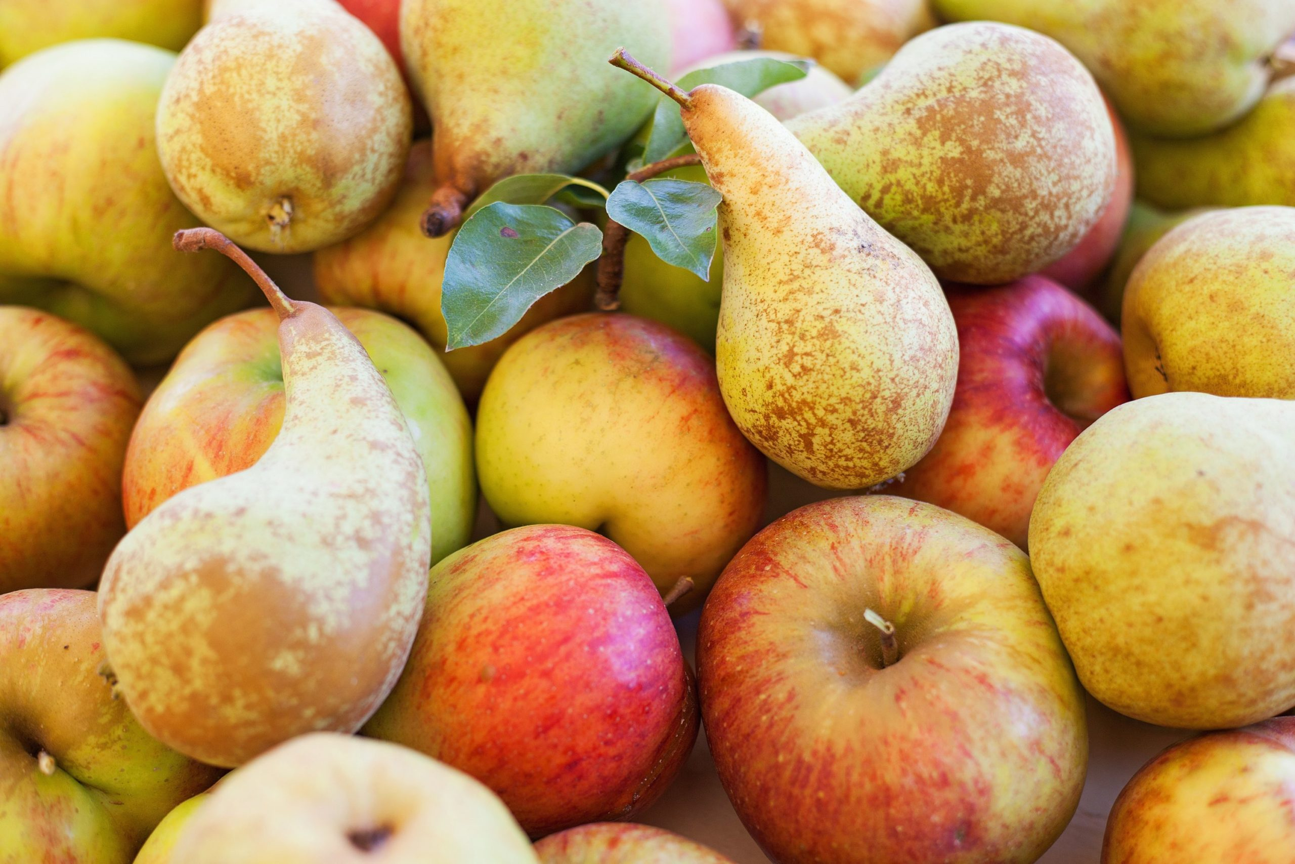 FieldSpec4 used in Australian study on apple and pear production