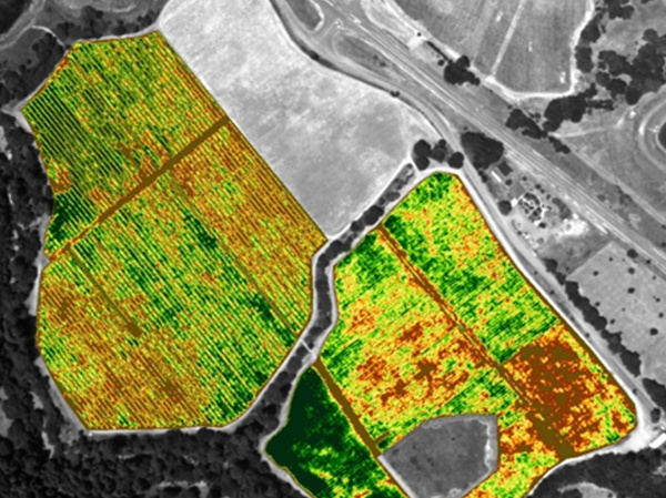 Precision ag spectrometry is transforming primary production